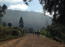 Kalaw to Inle Lake trek Myanmar